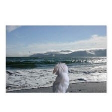 Maltese Dog Gifts Postcards (Package of 8)