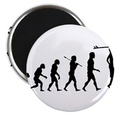 Surf Evolution Magnet