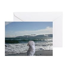 A Maltese Dog store Greeting Cards (Pk of 10)