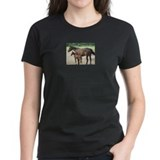 Standardbred foal shirt