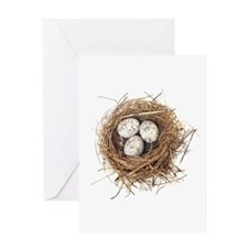 Nest Greeting Card