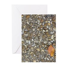 Don't Crush the Leaf Greeting Cards (Pk of 10)