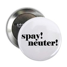 "Spay! Neuter! 2.25"" Button"