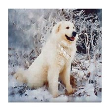 Great Pyrenees Tile Coaster, Winter Wood