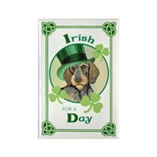 St. Pat Wirehaired Dachshund Rectangle Magnet (10