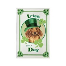 St. Pat Longhaired Dachschund Rectangle Magnet (10