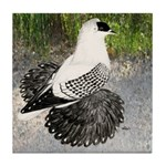 Swallow Pigeon In Field Tile Coaster