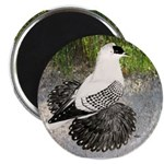 "Swallow Pigeon In Field 2.25"" Magnet (10 pack"