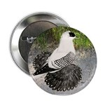 "Swallow Pigeon In Field 2.25"" Button (100 pac"