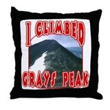 I Climbed Grays Peak Throw Pillow