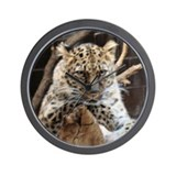 Jaguar Photo Altered to Look Wall Clock