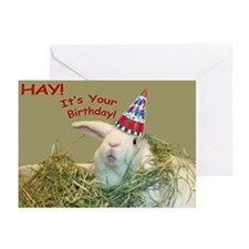 Bunny in Hay Birthday Greeting Cards (Pk of 10)