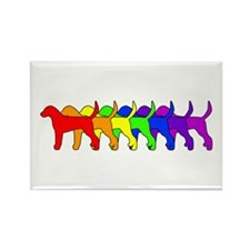 Rainbow Foxhound Rectangle Magnet