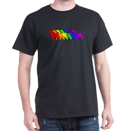 Rainbow Springer Dark T-Shirt