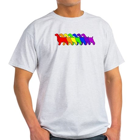 Rainbow Springer Light T-Shirt