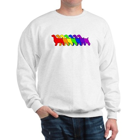 Rainbow Springer Sweatshirt