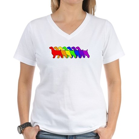 Rainbow Springer Women's V-Neck T-Shirt