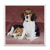 Beagles Tile Coaster