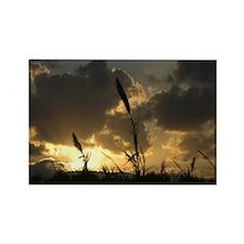 Sunset - Rectangle Magnet