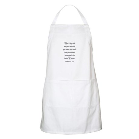 NUMBERS 32:30 BBQ Apron