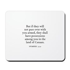 NUMBERS  32:30 Mousepad