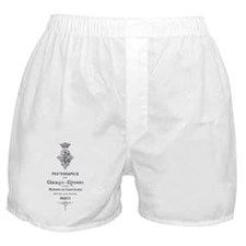 PARIS PHOTOGRAPHIE CHAMPS - ELYSEES Boxer Shorts