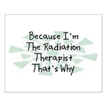 Because Radiation Therapist Small Poster