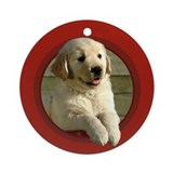Golden Retriever Puppy Round Red Ornament