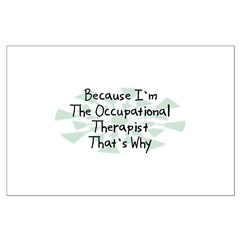 Because Occupational Therapist Posters