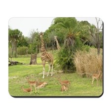 African Savanna Mousepad