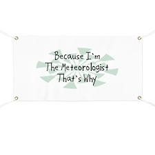 Because Meteorologist Banner