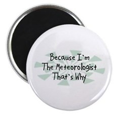 "Because Meteorologist 2.25"" Magnet (100 pack)"