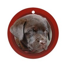 Chocolate Lab Puppy Round Red Ornament