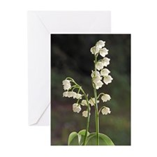 lily of Valley Greeting Cards (Pk of 10)
