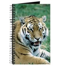 """Resting Tiger - B3"" Journal"