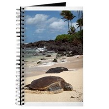 Sea Turtle Beach Journal
