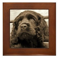 Spaniel Puppy Framed Tile