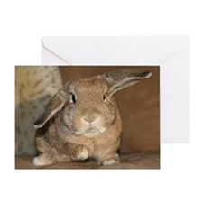 Bunny Birthday Greeting Card