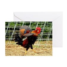 Ruffled Rooster Greeting Card