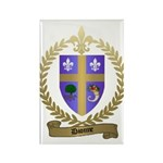 DIONNE Family Crest Rectangle Magnet (100 pack)