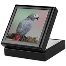African Grey Parrot Keepsake Box