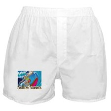 Endless Summer 2 Boxer Shorts