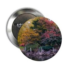 "Public Garden in Autumn 2.25"" Button (10 pack)"