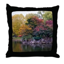Public Garden in Autumn Throw Pillow