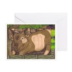Summer Pig Greeting Cards (Pk of 10)