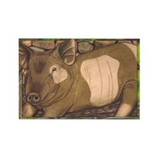 Summer Pig Rectangle Magnet