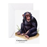Chimpanzee Greeting Cards (Pk of 10)