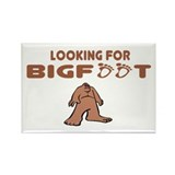 Bigfoot Rectangle Magnet (10 pack)