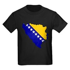 Bosnia and Herzegovina Flag T