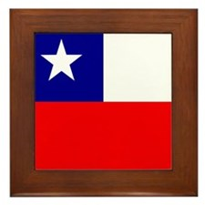 Chilean Framed Tile